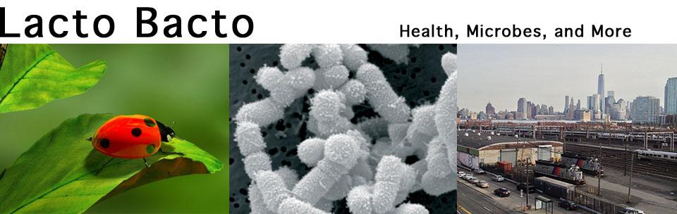 Lacto Bacto