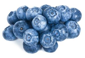blueberries – Lacto Bacto